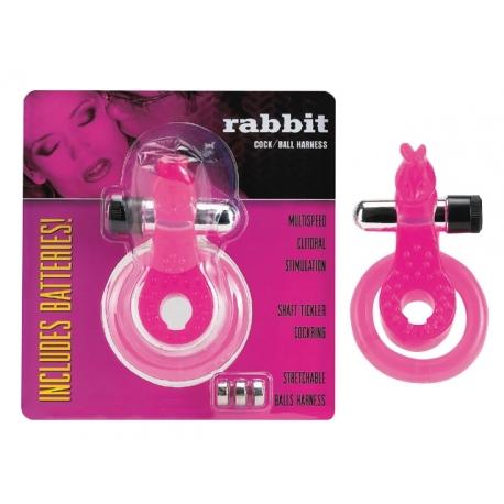 Anel Duplo Rabbit